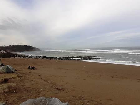 Balade bord littoral SMA 13.02.2020